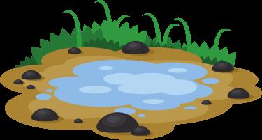 Imagen de un charco en una zona de tierra con piedras y plantas